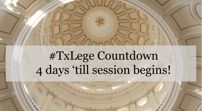 The Texas Legislature Convenes Soon — Are you prepared?