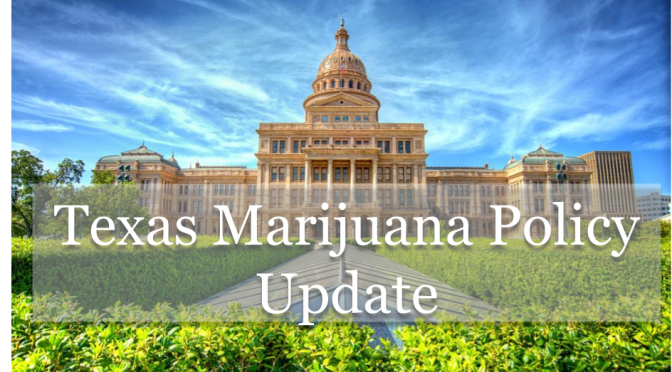 Big Week in Austin: Hemp was legalized and medical cannabis advances!