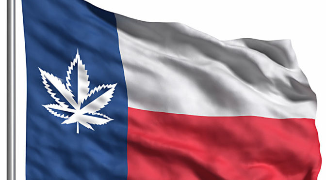 Texas' Marijuana Policy May be Progressing Quicker Than Expected